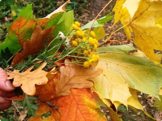 Есен златна, топла и красивакато ласка на любим човек.