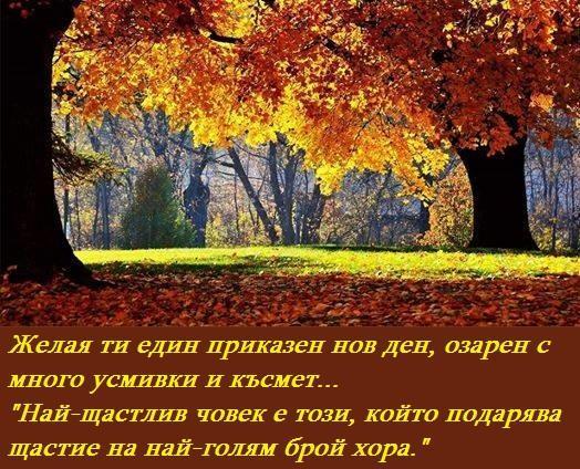 ПРИЯТЕН ДЕН 1
