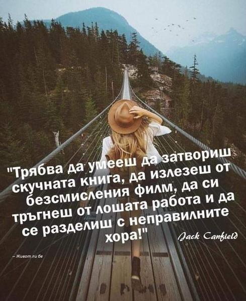 Цитати