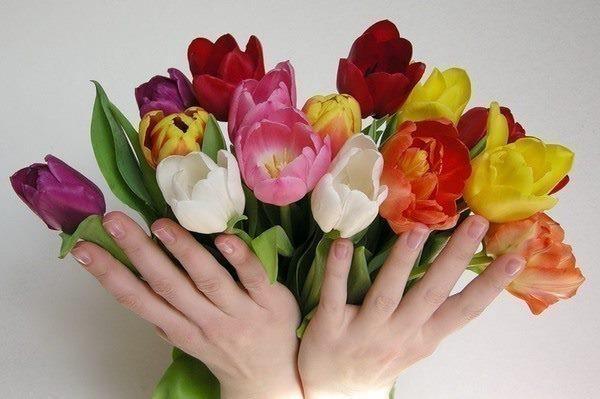 Албуми букети и цветя 1 слайдшоу