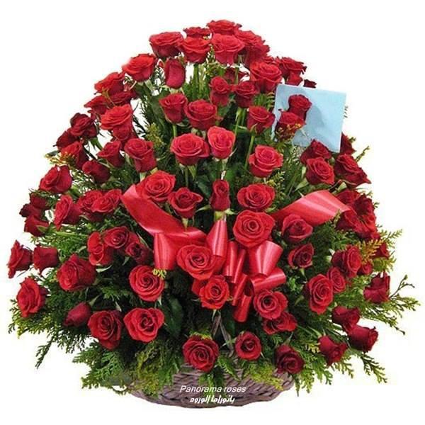 Роза - цвете красиво