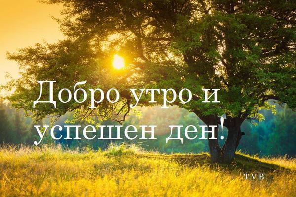 Добро утро 17