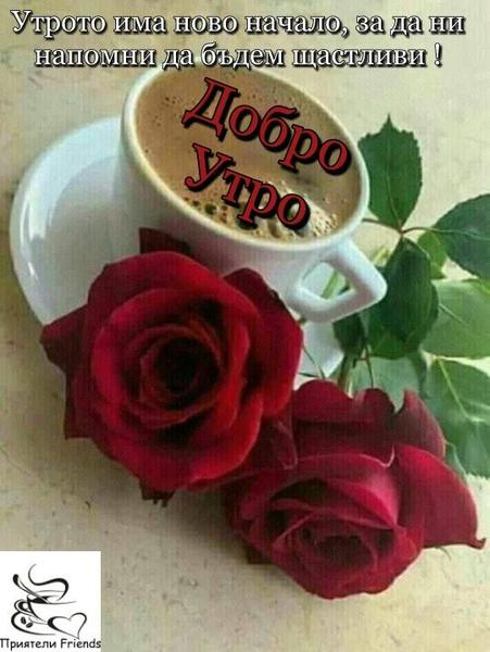 Добро Утро25