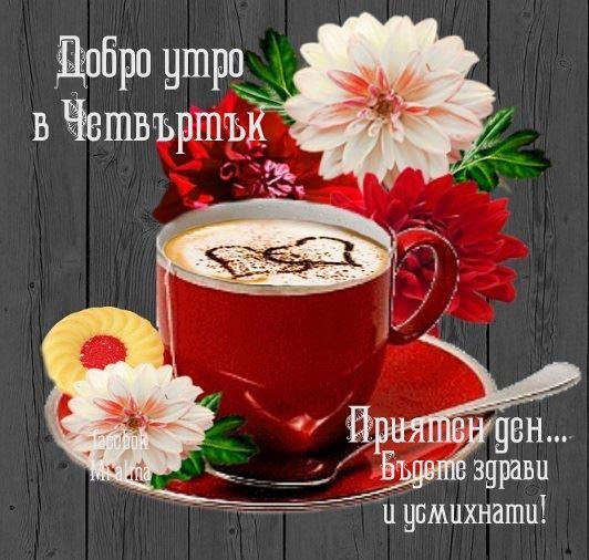 Добро Утро 24