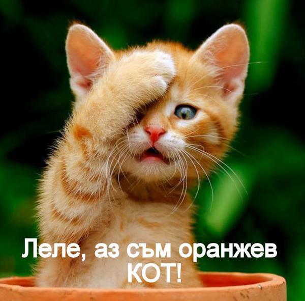 ХАРЕСАНО ОТ ТУК,ОТ ТАМ-3