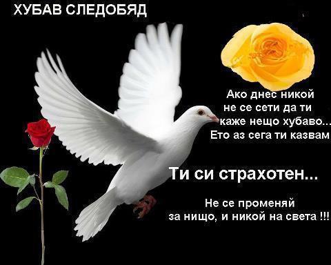 Приятен ден
