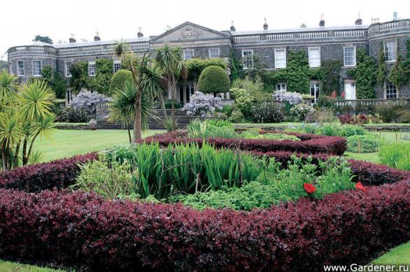Клод Моне е световно известен френски художник,роден през 1840г.в Париж.Градината на художника в Живерни е най-популярната в света.